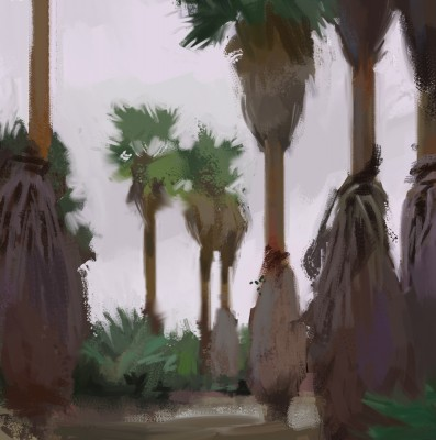 foggy palms_gkaida